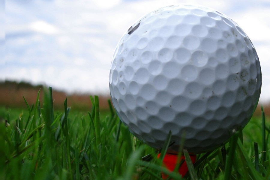Did you know we have a Golf Team?