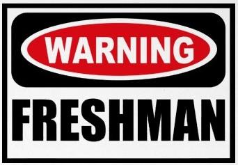 Freshman Year: A Breeze or a Burden?