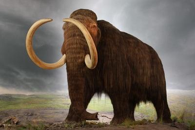Predicted Extinction Numbers Skyrocket