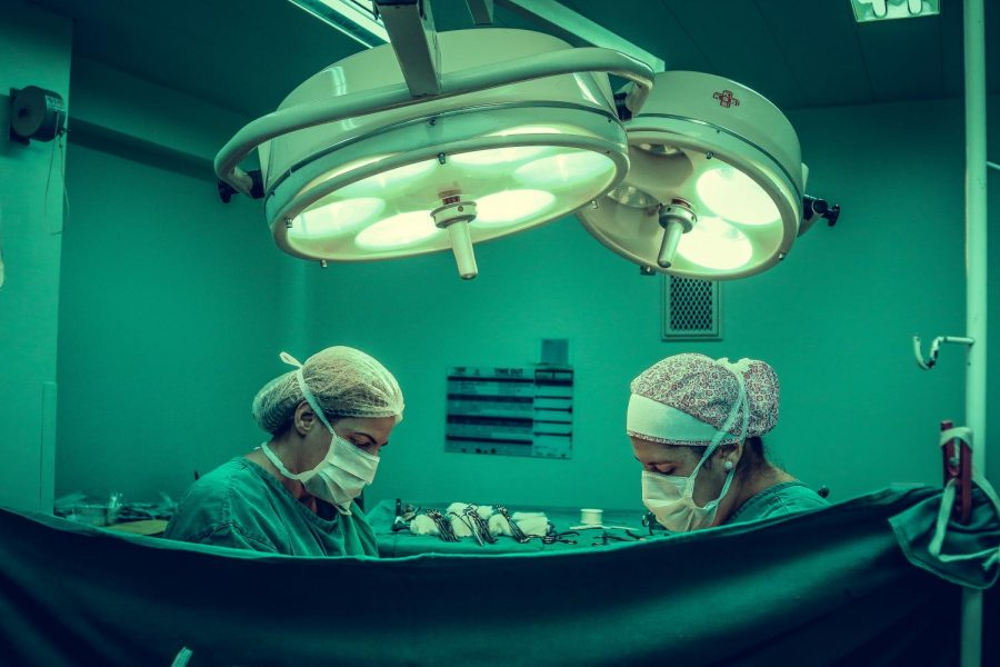 Organ Regrowth and the Future of Medicine
