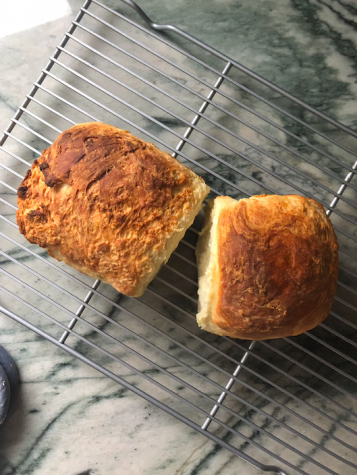 I've dredged up all the recipes that I've been meaning to make, put a ten-pound bag of flour to good use, and passed whole afternoons letting bread proof.