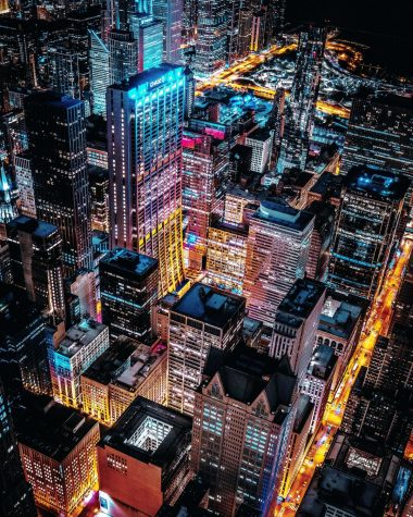 The Environmental Effect of Light Pollution